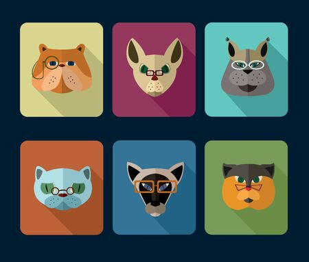 icon collection: Big set of vector icons of cats with different muzzles. Vector illustration for web or mobile application to select userpic.