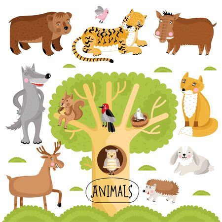 Cartoon animals set. Wild forest animals include tiger, wolf, fox, bear and many other.