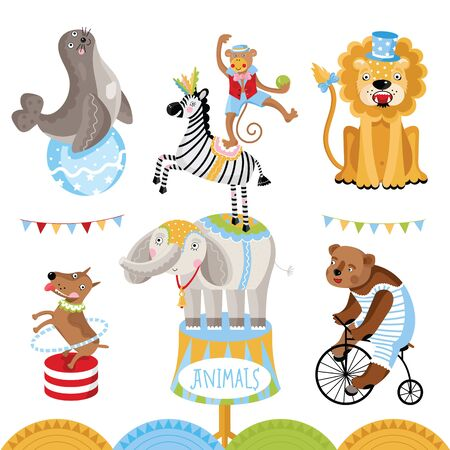 perform: Circus animals perform tricks. Isolated animals on a white background. Stock Photo
