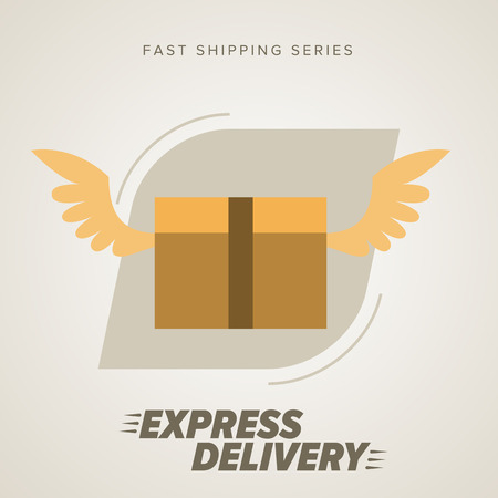 delivery person: Express Delivery Services. Elements of Trucking. Fast Shipping. Icon Delivery vector. Express Delivery of Goods. Delivery Service, Cargo Delivery. Illustration