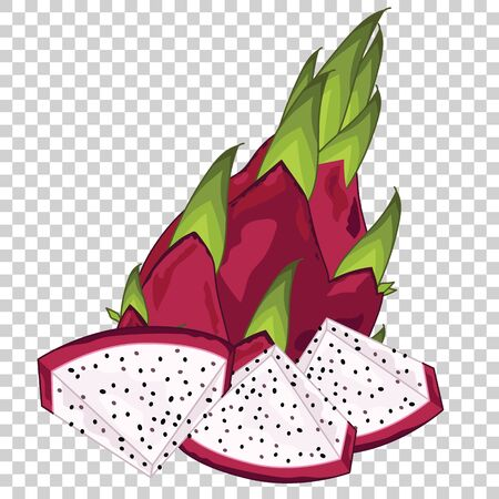 single object: Dragon Fruit Isolated, Vector. For design packing juice, yogurt and others.