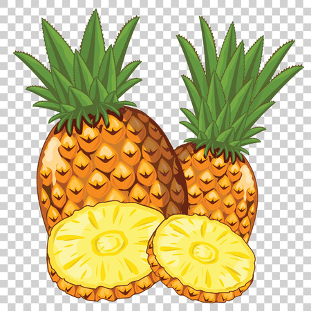 pineapple slice: Pineapple Isolated, Vector. For design packing juice, yogurt and others. Illustration