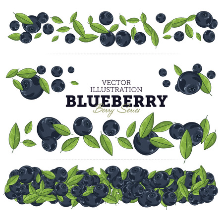 Blueberry Kompositionen, Blueberry Blätter, Heidelbeere Vektor, Cartoon Illustration von Blueberry. Blueberry auf weißen Hintergrund. Bunch Juicy Heidelbeeren Beeren.