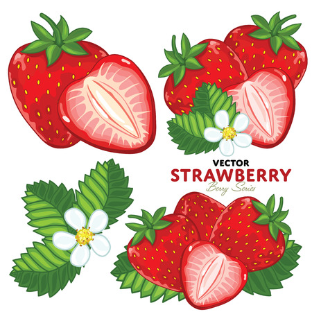 Set Strawberry Compositions, Strawberry Leaves, Strawberry Vector, Cartoon illustration of Strawberry. Strawberry Isolated on White Background. Bunch of Juicy Strawberry Berries.