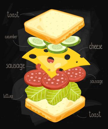 bocadillo: Sandwich Ingredientes en la pizarra. partes s�ndwich aislados en la pizarra. S�ndwich con ingredientes firmados. S�ndwich con salchicha y queso. Ilustraci�n en Sandwich estilo de la vendimia. Sandwich del vector.