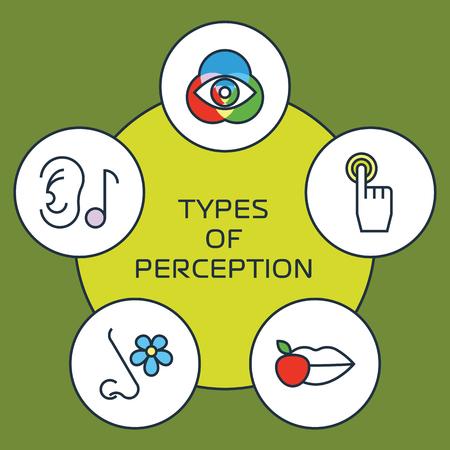 Cinq sens icône avec des organes humains Banque d'images - 50875064