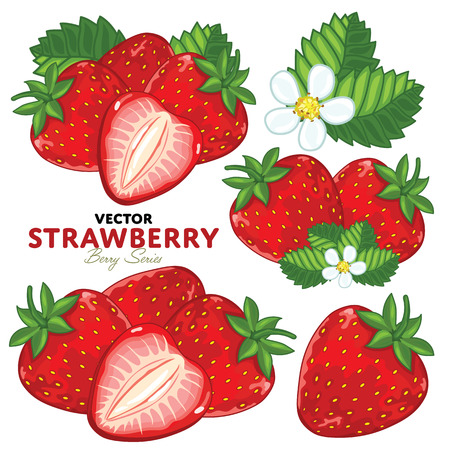 strawberry cartoon: Set Strawberry Compositions, Strawberry Leaves, Strawberry Vector, Cartoon illustration of Strawberry. Strawberry Isolated on White Background. Bunch of Juicy Strawberry Berries.