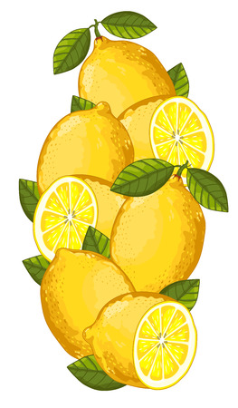 lemon slice: Lemon Isolated, Lemon Vector. Composition of Lemon on white background. Fruit set. Juicy Lemon, Lemon Slice. Fruit Composition for Packaging Juice or packaking Tea. Illustration