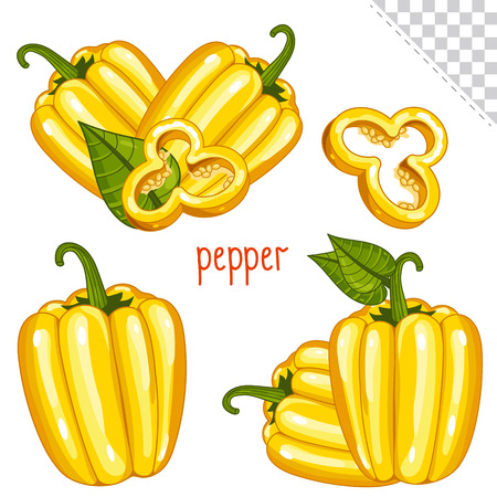 bulgarian: Bulgarian pepper isolated, Bulgarian pepper on white background. Bulgarian pepper icon, vector Bulgarian pepper. Spicy food, spicy ingredient. Organic food, farm food. Vegetable from the garden.