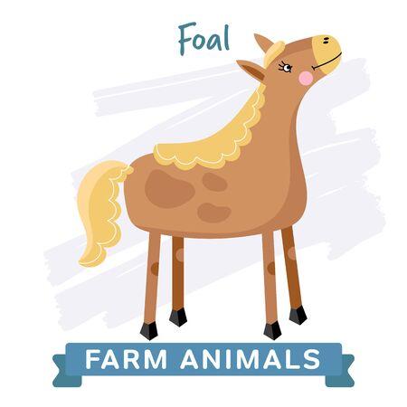 foal: Foal isolated, vector illustration. Farm Animals Series.