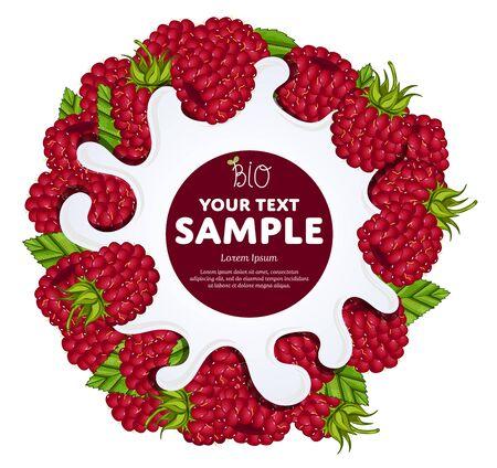 organic raspberry: Yogurt Splash on raspberry. Milk Spash, raspberry yogurt. Yogurt Packaging Design Template.
