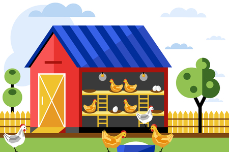 Chicken and egg farm, vector illustration. Poultry farm. Stock Illustratie