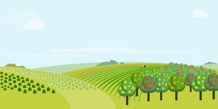 Absract farm field, green landscape vector illustration.
