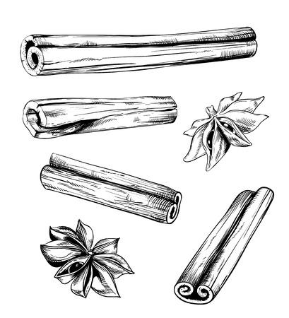 Kaneel en anijs vector op een witte achtergrond, gegraveerd stijl Stock Illustratie