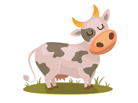 vertebrate: Isolated funny cow on white background, vector character. Illustration