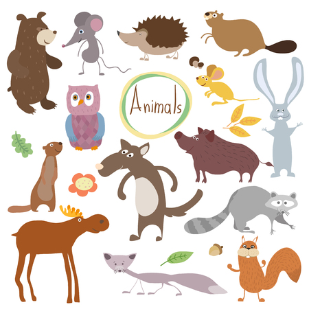 squirrel isolated: Wild and forest vector animals isolated in white background.