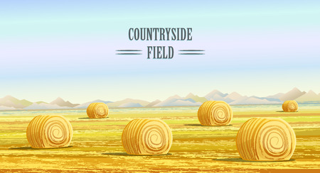 hay bale: Countryside. Rural area. Fields with haystacks. Country Landscape. Meadow background. Hay bales. Farming life. Vector illustration in cartoon style.
