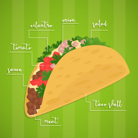 Taco. Mexican food concept. Spicy meal. Tortilla, lettuce, salsa and beef in wrap. Vector illustration. Mexican fastfood.
