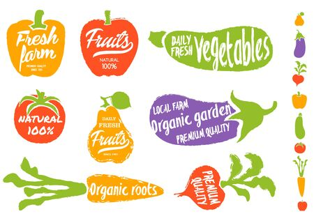 vegetable garden: Healthy food background. Isolated vegetable and fruit vector illustration. Vegetarian menu elements. Natural food concept. Local farm concept. Organic garden. Natural product.