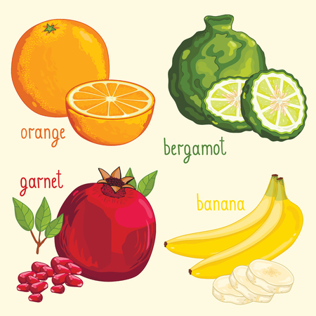 mix fruit: Set of fruit mix vector isolated. Healthy eat. Orange, bergamot, pomegranate and banana fruit. Natural organic food. Ingredients for a vegetarian meal. Sweet and ripe summer fruit.