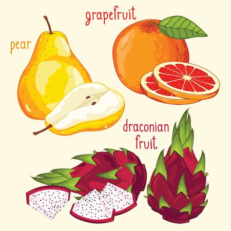 mix fruit: Set of fruit mix vector isolated. Healthy eat. Dragon fruit, pear and grapefruit fruit. Natural organic food. Ingredients for a vegetarian meal. Sweet and ripe summer fruit.
