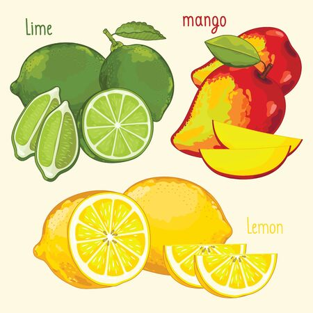 mix fruit: Set of fruit mix vector isolated. Healthy eat. Lime, mango and lemon fruit. Natural organic food. Ingredients for a vegetarian meal. Sweet and ripe tropical summer fruit.