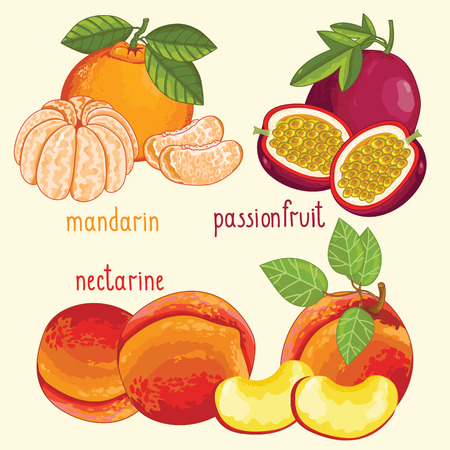 nectarine: Set of fruit mix vector isolated. Healthy eat. Passion fruit, mandarin and nectarine fruit. Natural organic food. Ingredients for a vegetarian meal. Sweet and ripe summer fruit.