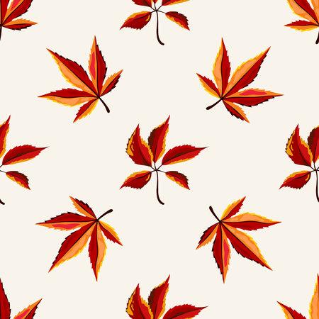 autumn leaves background: Autumn vector seamless pattern. Hand draw autumn leaves background. Maple leaves. Illustration