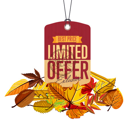 best ad: Autumn sale banner, vector illustration. Exclusive limited offer, best price label in vintage style on white background with colorful autumn leaves. Retro design promotional badge, sticker, ad. Illustration