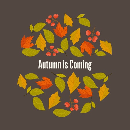 fall leaves: Autumn leaves fall on background vector illustration.