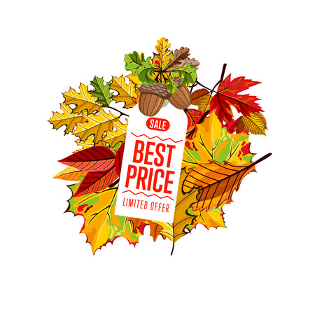 best buy: Autumn seasonal sale badge, vector illustration. Best price, limited offer label on white background with colorful autumn leaves. White price tag with red text. Autumnal discount.