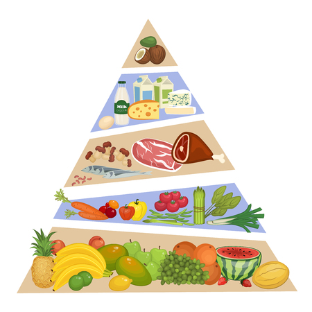 ration: Food pyramid. Fruits, vegetables, meat and fish, dairy products vector illustrations in order of importance. Components of recommended ration. For healthy nutrition illustrating. Isolated on white