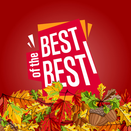 best buy: Autumn sale design template, vector illustration. Best of the best sale proposition banner with colorful leaves on red background. Advertisement about autumnal discount. Poster design for shop Illustration