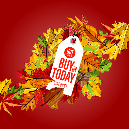 best ad: Autumn sale badge, vector illustration. Buy only today, hot price label on red background with colorful autumn leaves. White price tag with red text. Promotional discount template