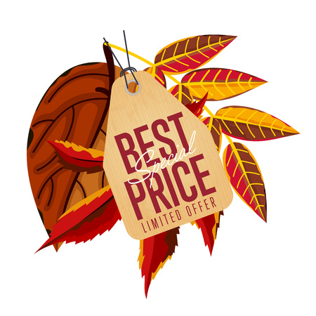 proposition: Autumn seasonal sale badge, vector illustration. Best special price, limited offer label in vintage style on white background with colorful autumn leaves. Incredible sale proposition Illustration