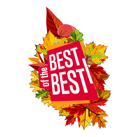 best ad: Autumn sale design template, vector illustration. Best of the best sale proposition banner with colorful leaves on white background. Advertisement about autumnal discount. Poster design for shop Illustration