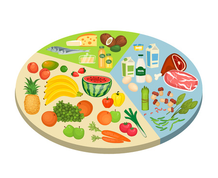 ration: Food circle diagram. Fruits, vegetables, meat, fish, eggs, nuts, dairy products vector illustrations. Components of recommended ration scheme. For human healthy nutrition concepts design
