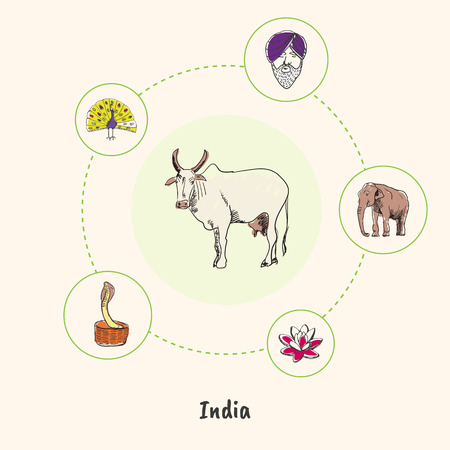 india cow: Attractive India. White cow colorized doodle surrounded elephant, lotus flower, cobra in basket, peacock, man in turban hand drawn vector icons. Indian cultural, nature symbols. Travel in Asia concept Illustration