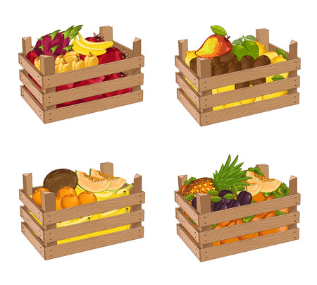 Wooden box full of fruit set isolated vector