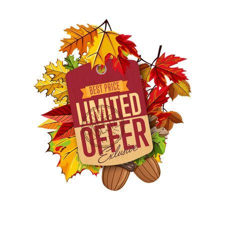 best ad: Autumn sale label. Limited offer. Stock Photo