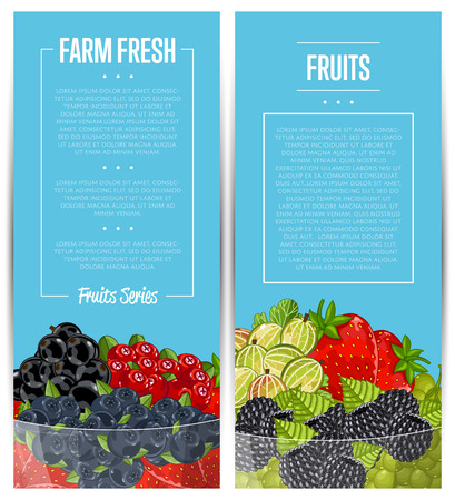 Farm fresh berry flyers vector illustration. Juicy organic raspberry, blackberry, strawberry, gooseberry, currant in glass bowl. Natural fruit poster, healthy sweet diet, vegetarian nutrition promo