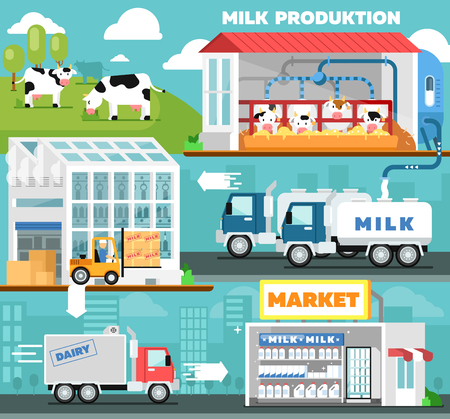 Eco milk production infographics in flat style. Cow farm, transportation and processing on milk factory, fresh and healthy dairy product distribution in retail. Milk manufacturing vector illustration Ilustracja