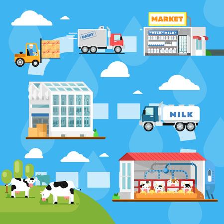 Infografía de fabricación de leche ecológica. Etapas de la producción de leche ilustración vectorial. Granja de vacas, transporte y procesamiento en la fábrica de leche, distribución de productos lácteos frescos y saludables en el mercado.