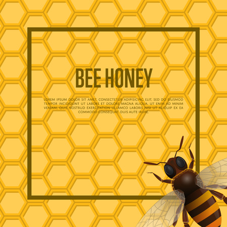 Honeybee on honeycomb retail banner