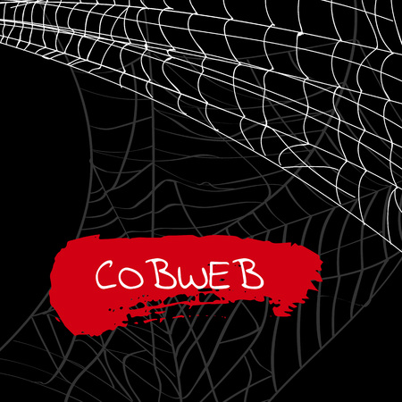 Halloween party backdrop with poisonous cobweb. Realistic design element for scary holiday poster decoration. Abstract spider cobweb silhouette on black background vector illustration.