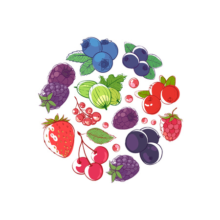 Fresh berries round concept vector illustration Иллюстрация