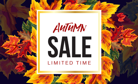 Modern design of autumnal sale banner with bright foliage and white square with message Vectores