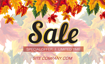 Vector template of poster with promotion of seasonal sale with bright autumnal foliage on white background Çizim