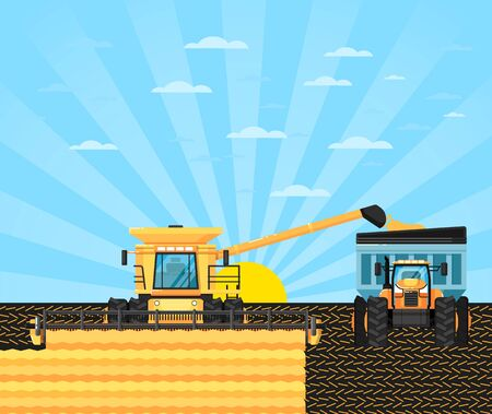 Agricultural combine harvester in grain field. Rural agribusiness vector illustration with farmer working in field, growing and harvesting at farmland. Locally grown natural food on countryside farm