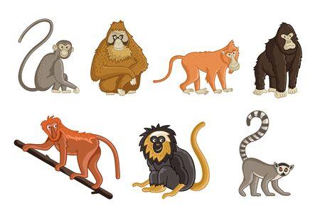 Cartoon monkey. Wildlife and zoo animals set. Gorilla, lemur, chimpanzee, macaque, orangutan, gibbon and baboon animals isolated vector illustration. Collection of funny tropical monkey.